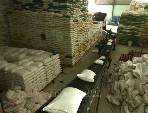 Giá gạo Việt Nam tăng, giá gạo Thái Lan giảm tuần thứ bảy liên tiếp