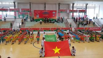 Khai mạc Giải bóng đá Nhi đồng toàn quốc tại Phú Yên