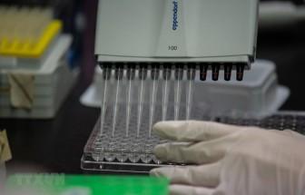 Hàn Quốc thông báo 5 ca tử vong sau khi tiêm vắcxin phòng cúm