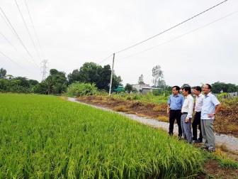 An Giang triển khai Nghị quyết Đại hội Đảng trong ngành nông nghiệp