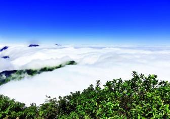 Săn mây ở 3.046 m