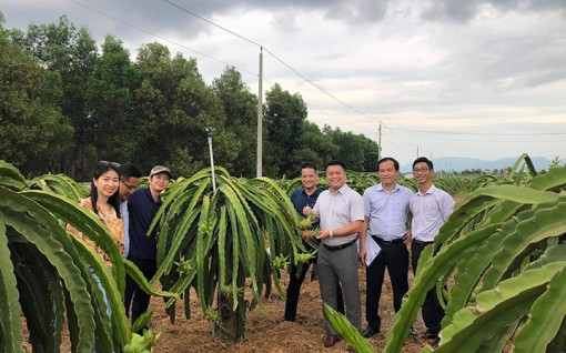 Giải pháp quản lý truy xuất nguồn gốc vùng trồng