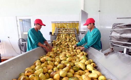 Tận dụng các FTA nhằm duy trì tăng trưởng xuất khẩu