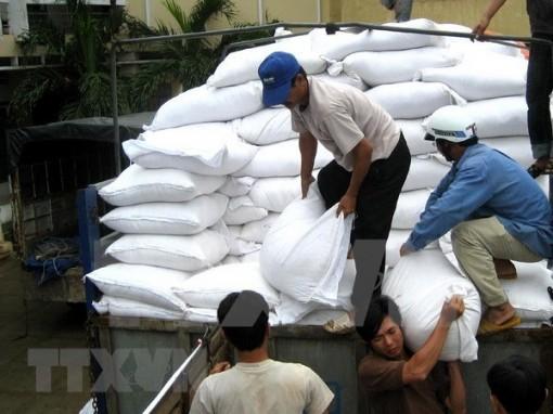 Bộ Lao động đề xuất cấp bổ sung 6.500 tấn gạo cho 4 tỉnh miền Trung