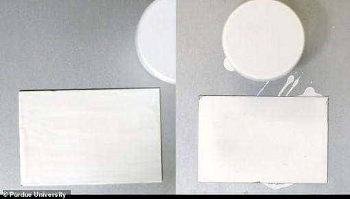 Sơn siêu trắng phản xạ 95% ánh sáng, có thể thay thế điều hòa không khí