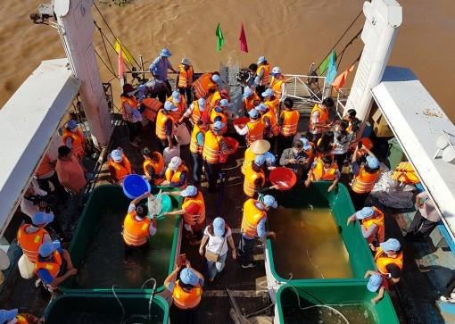 Trên 1,1 triệu con cá bản địa được thả xuống sông Vàm Nao