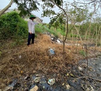 Tìm phương án khắc phục bãi rác xã Kiến An