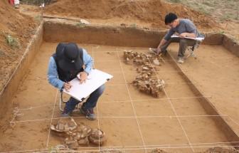 Hành trình khám phá Bãi Cọi, nơi giao thoa của nhiều nền văn hóa
