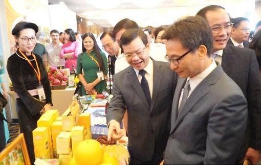 Liên kết phát triển du lịch giữa TP Hồ Chí Minh với tám tỉnh Đông Bắc