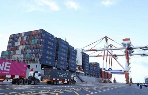 Hàng hóa qua cảng biển tăng, lượt khách giảm do dịch COVID-19