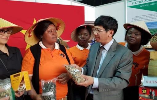 Mozambique ca ngợi Việt Nam với vai trò Ủy viên không thường trực HĐBA