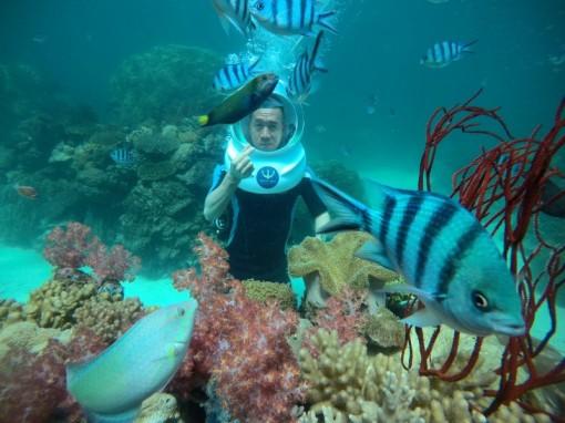 Khởi động 'Du lịch Việt Nam an toàn, hấp dẫn' trong bối cảnh mới
