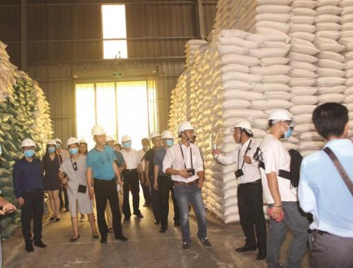 Sở Công thương An Giang tăng cường quản lý, thực hiện chiến lược xuất, nhập khẩu hàng hóa