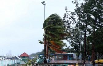 Khu vực Bắc Biển Đông biển động, có nơi có lốc xoáy và gió giật mạnh