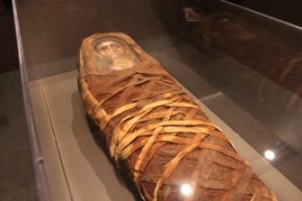 Phát hiện vật lạ trong xác ướp 2.000 năm tuổi ở Ai Cập