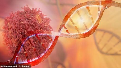 Anh thí điểm xét nghiệm máu đơn giản giúp phát hiện 50 bệnh ung thư