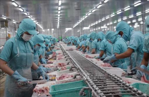 VASEP dự báo xuất khẩu thủy sản năm 2020 đạt khoảng 8,6 tỷ USD