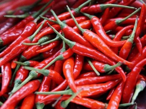 Những thực phẩm giúp giữ ấm cơ thể vào mùa đông