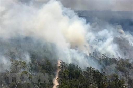 Cháy rừng thiêu rụi gần một nửa hòn đảo di sản thế giới Fraser