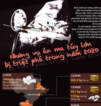 Những vụ án ma túy lớn bị triệt phá trong năm 2020
