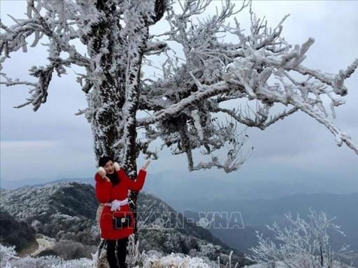 Bắc Bộ, Trung Bộ rét hại, vùng núi cao có khả năng xảy ra mưa tuyết, băng giá