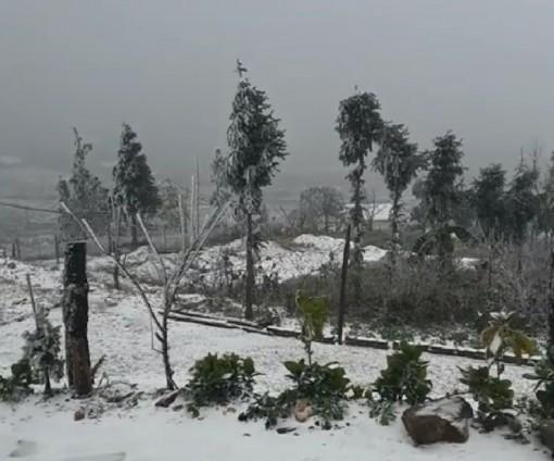 Băng tuyết phủ dày đặc, Lào Cai thiệt hại nặng nề