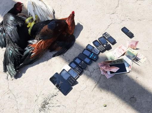 Công an xã Tân Phú triệt phá tụ điểm đá gà ăn thua bằng tiền