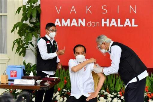 Indonesia bắt đầu tiêm đại trà vaccine ngừa COVID-19