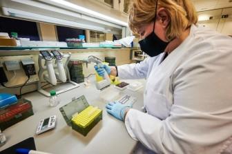 Iceland – quốc gia dẫn đầu thế giới về tốc độ giải trình tự gen Covid-19