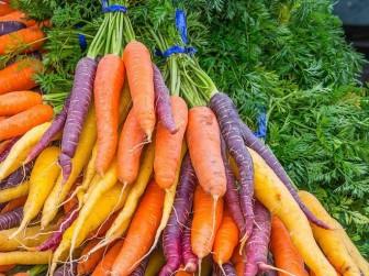 6 lợi ích tuyệt vời của cà rốt đen có thể bạn chưa biết