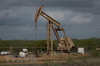 Giá dầu Châu Á tăng nhẹ trong phiên chiều ngày 19-1