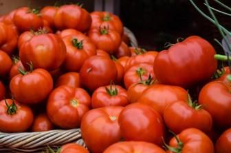 Cách bảo quản cà chua mấy tháng trời vẫn ngon