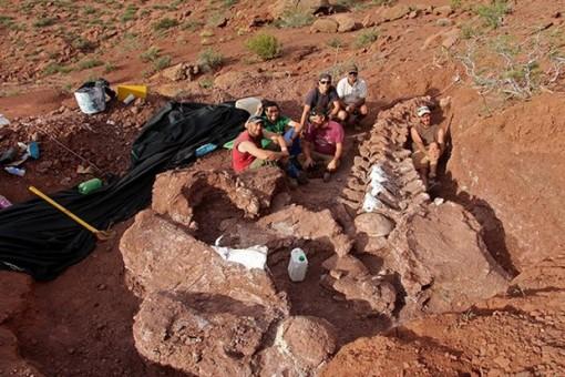 Phát hiện xương hóa thạch có thể của loài khủng long lớn nhất