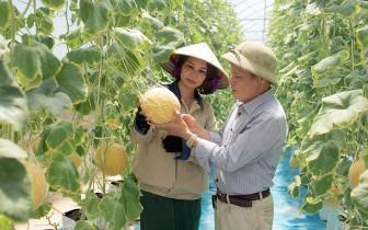 Hưng Yên nhân rộng mô hình chuỗi sản xuất, tiêu thụ nông sản