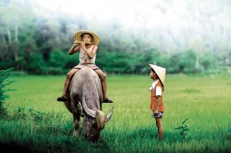 Con trâu trong văn hóa phương Đông