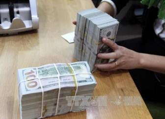 Sáng mùng 6 Tết, tỷ giá trung tâm giảm 15 đồng