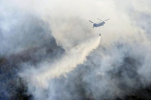 Nhật Bản: Hỏa hoạn nghiêm trọng thiêu rụi ít nhất 76ha rừng gần Tokyo