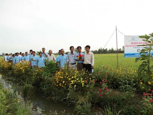 Nông nghiệp Tân Châu chuyển từ lượng sang chất