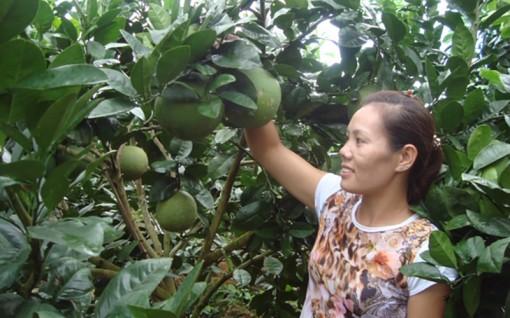 Xã miền núi Tân Quang về đích nông thôn mới
