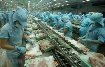 Các giải pháp lâu dài giữ đà tăng trưởng bền vững cho xuất khẩu