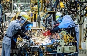 Tăng 15 bậc, Việt Nam lần đầu lọt nhóm có Chỉ số Tự do kinh tế trung bình