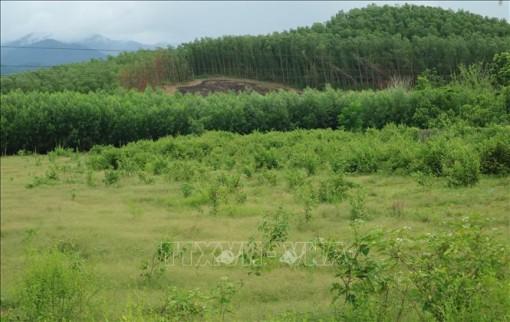 Đổi thay nơi vùng nông thôn mới miền núi đầu tiên của Khánh Hoà