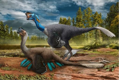 Phát hiện hóa thạch khủng long đang ấp trứng có phôi 70 triệu năm tuổi