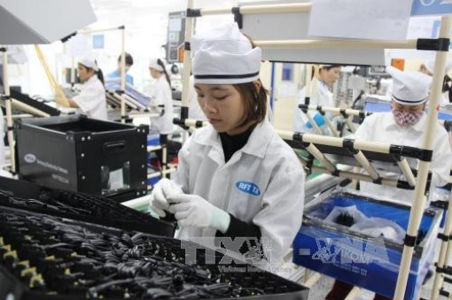 UEA tiếp tục là thị trường tiềm năng với doanh nghiệp Việt
