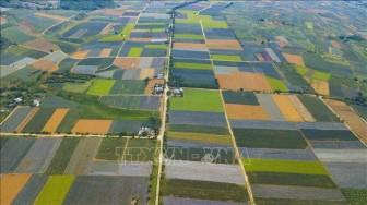 Ninh Bình phát triển du lịch nông nghiệp, nông thôn thu hút du khách