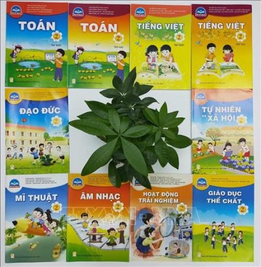 Nhà xuất bản Giáo dục Việt Nam công bố giá sách giáo khoa lớp 2, lớp 6