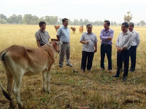 Nâng chất phong trào nông dân ở huyện Tri Tôn