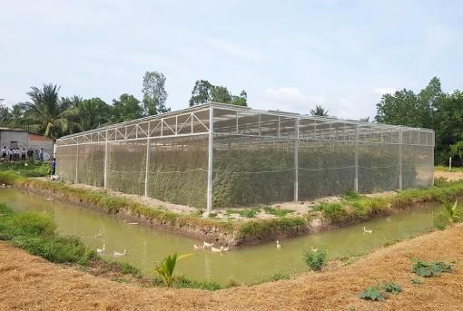 Mang điện mặt trời đến các hộ Khmer