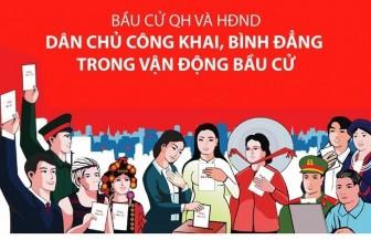 Các nguyên tắc và hành vi bị cấm khi vận động bầu cử