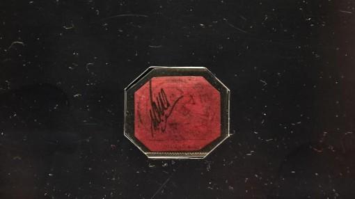 Con tem hiếm nhất thế giới có thể được bán với mức giá 15 triệu USD